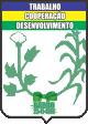 Câmara Municipal de Barro